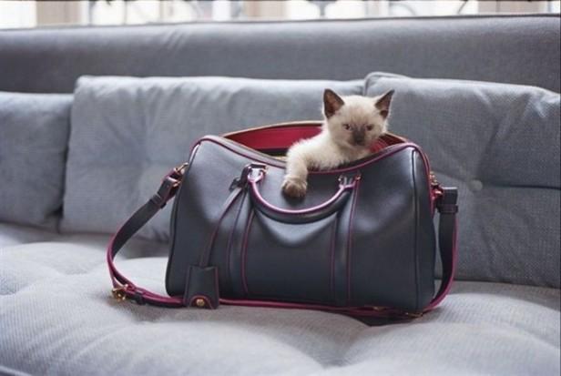 """Louis-Vuitton-""""SC-Bag""""-1"""
